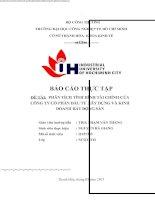 phân tích tình hình tài chính của công ty cổ phần thanh hoa sông đà