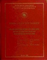 Các đối sách công nghiệp của Trung Quốc sau khi gia nhập WTO và bài học kinh nghiệm cho Việt Nam