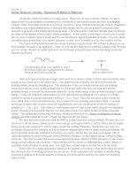 Simple Molecular Orbitals - Sigma and Pi Bonds in Molecules pot