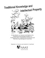 Traditional Knowledge and Intellectual Property doc