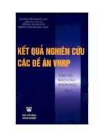 Kết quả nghiên cứu các đề án VNRP pptx