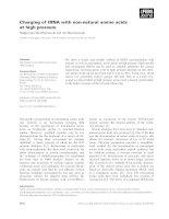 Báo cáo khoa học: Charging of tRNA with non-natural amino acids at high pressure potx