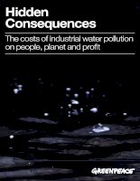 Hidden Consequences: The costs of industrial water pollution on people, planet and profit potx