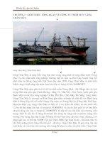 giới thiệu tổng quan về công ty tnhh mtv cảng chân mây
