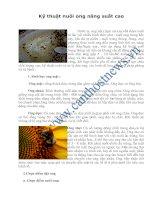 Kỹ thuật nuôi ong năng suất cao potx