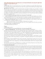 Các câu hỏi và đáp án môn quản trị học pdf