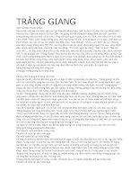 bài văn mẫu phân tích Tràng Giang của Huy Cận