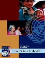 Liên hợp quốc tại Việt Nam - Tóm tắt tình hình thế giới ppt