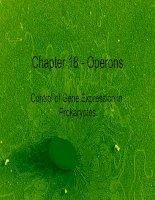 Operons và quá trình điều hòa hoạt động của gen