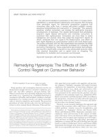 Remedying Hyperopia: The Effects of Self- Control Regret on Consumer Behavior pptx