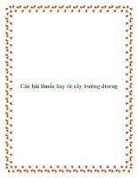 Các bài thuốc hay từ cây hướng dương pdf