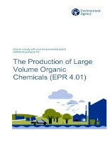 The Production of Large Volume Organic Chemicals (EPR 4.01) pptx