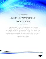 GFI White Paper Social networking and security risks doc