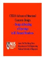 CE5510 Advanced Structural Concrete Design pot