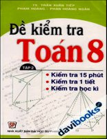 đề kiểm tra toán 8 - tập 2