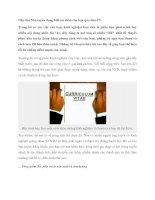 Hãy cho Nhà tuyển dụng biết ưu điểm của bạn qua bản CV pptx