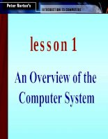 An Overview of the Computer System pdf