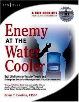 enemy at the water cooler - real-life stories of insider threats & enterprise security management countermeasures
