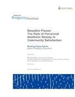 Beautiful Places: The Role of Perceived Aesthetic Beauty in Community Satisfaction docx