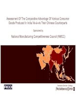 Assessment Of The Comparative Advantage Of Various Consumer Goods Produced In India Vis-à-vis Their Chinese Counterparts pptx