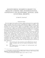 MONITORING WOMEN''''S RIGHT TO HEALTH UNDER THE INTERNATIONAL COVENANT ON ECONOMIC, SOCIAL AND CULTURAL RIGHTS potx
