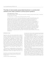 The fate of stormwater-associated bacteria in constructed wetland and water pollution control pond systems potx