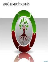 sơ đồ hình cây cơ bản cho powerpoint, tree diagram