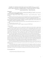 Nghiên cứu phương pháp bảo quản quả hồng (Diospyros kaki T.) bằng các hợp chất hữu cơ không độc và bằng bao gói túi HDPE doc