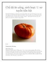 Chế độ ăn uống, sinh hoạt: U xơ tuyến tiền liệt pdf