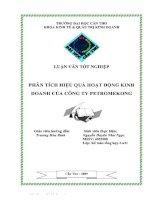 luận văn tốt nghiệp phân tích hiệu quả hoạt động kinh doanh tại công ty petromekong