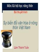 Sự biến đổi văn hóa ở nông thôn Việt Nam pot