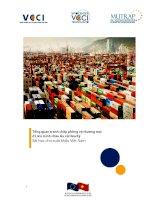 Tổng quan tranh chấp phòng vệ thương mại ở Liên minh châu Âu và Hoa Kỳ doc