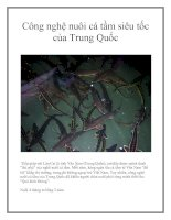 Công nghệ nuôi cá tầm siêu tốc của Trung Quốc pdf