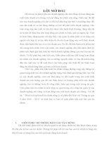 PHÂN TÍCH TÌNH HÌNH TÀI CHÍNH CÔNG TY CỔ PHẦN DẦU THỰC VẬT TƯỜNG AN