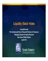 persaud-liquidity black holes