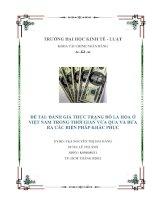 Đánh giá thực trạng đô la hóa ở Việt Nam trong thời gian vừa qua và đưa ra các biện pháp khắc phục