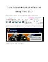 Cách thêm chú thích cho hình ảnh trong Word 2013 pot