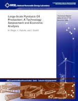 Large-Scale Pyrolysis Oil Production: A Technology Assessment and Economic Analysis pptx