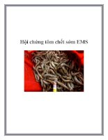 Hội chứng tôm chết sớm EMS doc