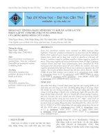 KHẢO SÁT TÍNH ĐA DẠNG SINH HỌC VI KHUẨN ACID LACTIC PHÂN LẬP TỪ CƠM MẺ Ở BA VÙNG SINH THÁI CỦA ĐỒNG BẰNG SÔNG CỬU LONG pdf