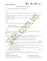 Đề thi thử ĐH môn Sử 2012 -2013 có đáp án pdf