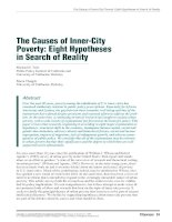 The Causes of Inner-City Poverty: Eight Hypotheses in Search of Reality pptx