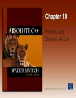 Chapter 10 Pointers and Dynamic Arrays potx