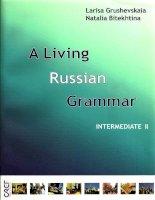 a living russian grammar part 2 intermediate ii