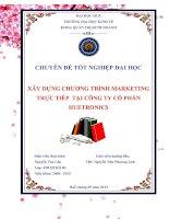 Xây dựng chương trình Marketing trực tiếp tại công ty HUETRONICS