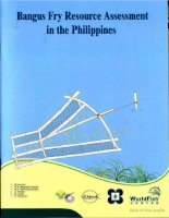 bangus fry resource assessment in the philippines pptx