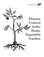 desease control in vegetables