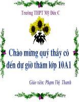 Bài giảng: Cảnh ngày hè của Nguyễn Trãi