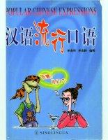 popular chinese expressions sinolingua