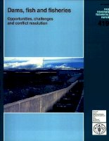 dams fish and fisheries opportunities challenges 419 pdf